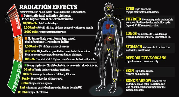 effects of radiation exposure
