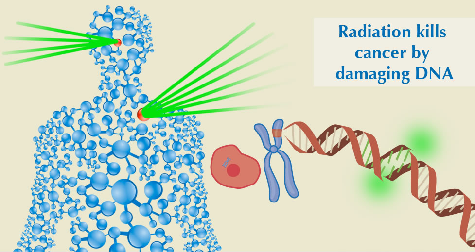 radiation damages dna