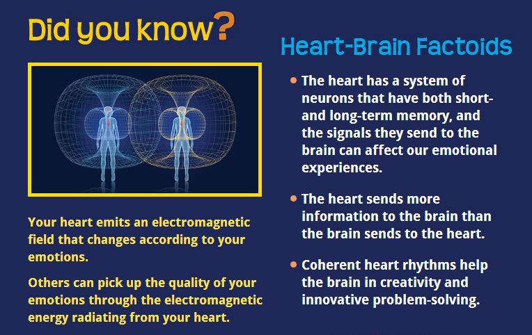 heart and brain waves